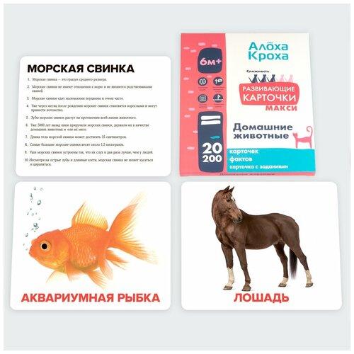 Домашние животные | Развивающие и обучающие карточки для детей по методу Домана от
