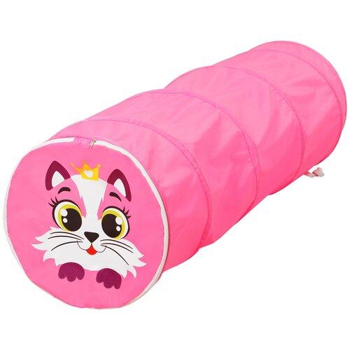 Туннель Школа талантов Туннель, розовый котёнок