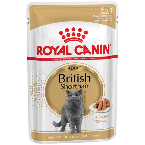 Влажный корм для кошек Royal Canin породы Британская короткошерстная 85 г (кусочки в соусе) royal canin royal canin british shorthair 34 для породы британская короткошерстная старше 12 мес 4кг
