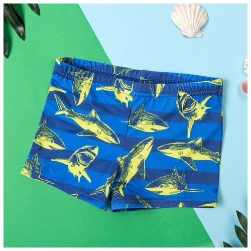 Купить Плавки Kaftan размер 98-104, синий, Белье и пляжная мода