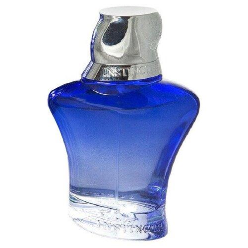 Купить Парфюмерная вода Rasasi Instincts pour Homme, 90 мл