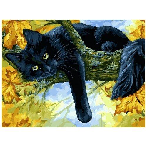 Фото - Белоснежка живопись по номерам 30х40 см 296-AS Осенний кот белоснежка картина по номерам солнечный кот 30х40 см 297 as
