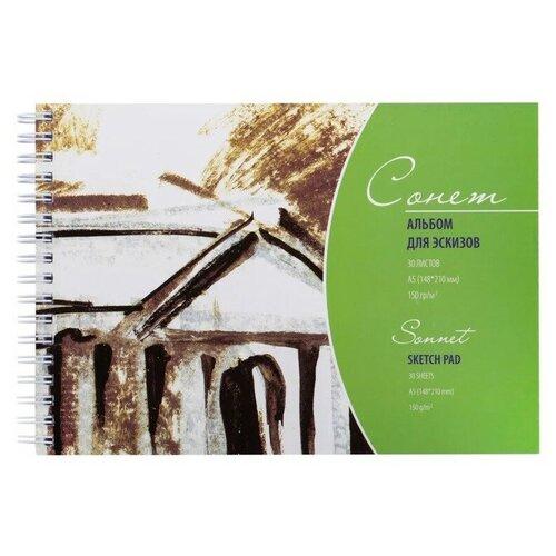 Купить Альбом для эскизов А5 30л 150г/м на спирали Сонет 48373 2 шт., Альбомы для рисования