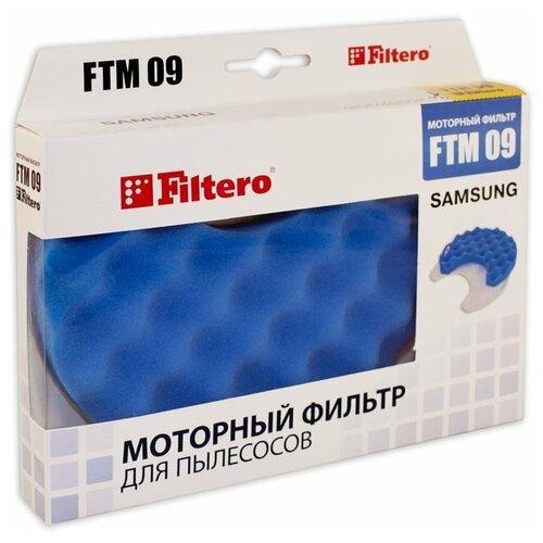 Filtero Моторные фильтры FTM 09 1 шт.