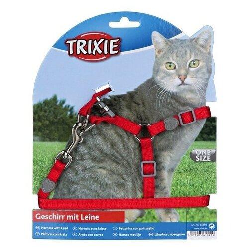 Шлейка с поводком для кошки Premium, нейлон