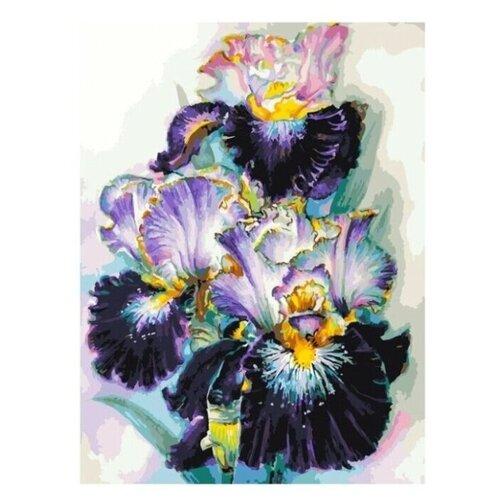 Купить Белоснежка картина по номерам Аметистовый вечер 30х40 см (356-AS), Картины по номерам и контурам