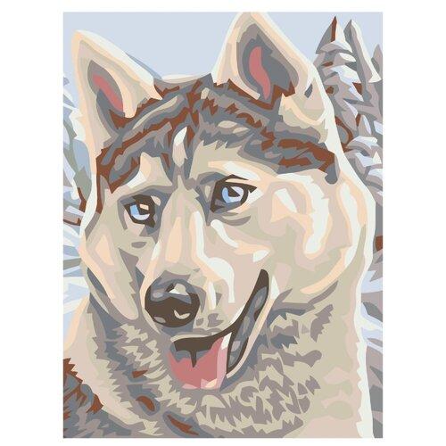 Купить Картина по номерам, 75 x 100, A59, Живопись по номерам , набор для раскрашивания, раскраска, Картины по номерам и контурам