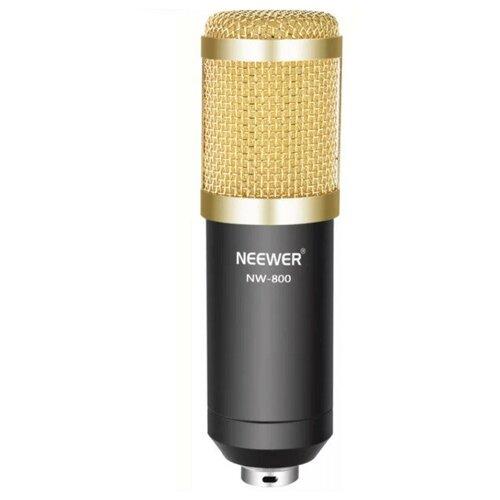 Конденсаторный студийный микрофон NW-800, золото с черным
