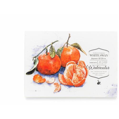 Фото - Альбом для акварели Малевичъ White Swan 32 х 23 см, 250 г/м², 20 л. альбом для акварели royal talens rembrandt 32 х 24 см 300 г м² 20 л