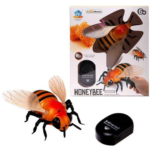 Купить Интерактивные насекомые и пресмыкающиеся. Пчела р/у, световые эффекты, Джамбо Тойз, Роботы и трансформеры
