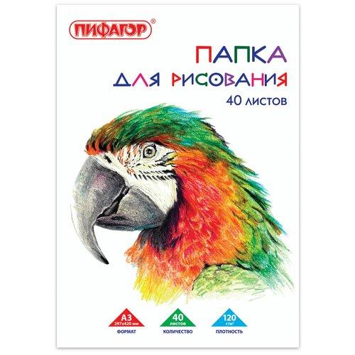 Фото - Папка для рисования Пифагор Попугай 42 х 29.7 см (A3), 120 г/м², 40 л. папка для рисования bruno visconti 42 х 29 7 см a3 160 г м² 20 л