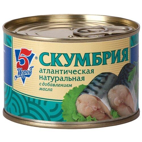 Фото - 5 Морей Скумбрия атлантическая натуральная с добавлением масла, 250 г скумбрия холодного копчения vici атлантическая крупная 300 г