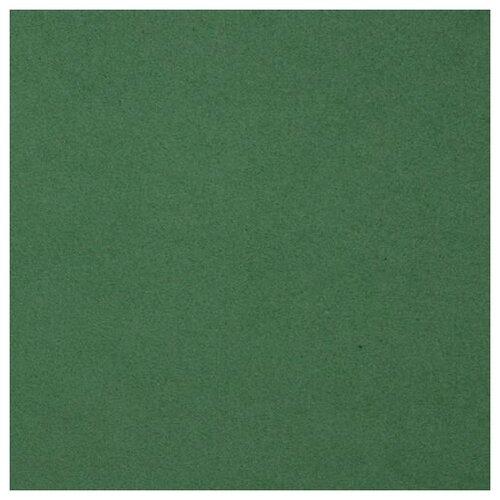 Фоамиран EVA-1010, 10 шт, 20х30 см, 1 мм., Astra&Craft (BK014 темно-зеленый)