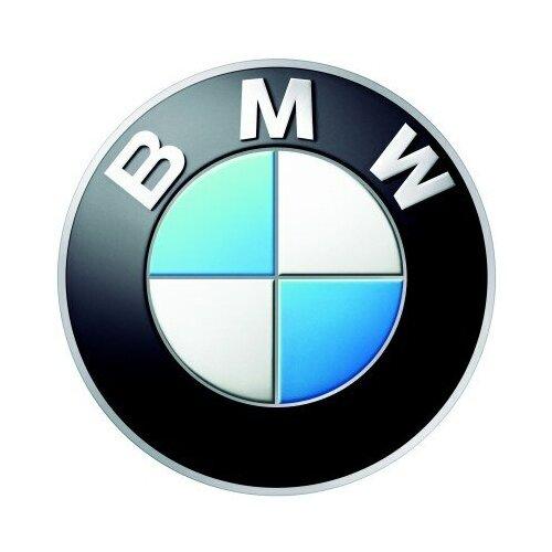 BMW 34116772117_BMW, болт литва
