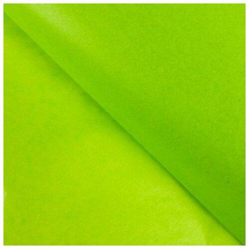 Бумага упаковочная тишью, зеленое яблоко, 50 см х 66 см, набор 10 шт. 7059627
