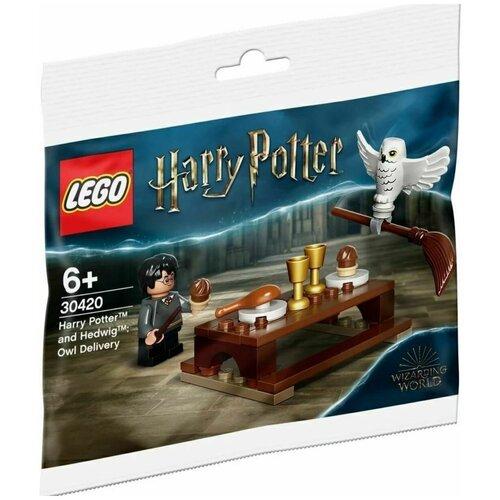 Конструктор LEGO Harry Potter 30420 Harry Potter and Hedwig, Гарри Поттер и Букля конструктор lego harry potter 75979 букля