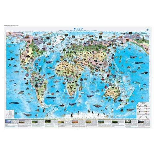 Фото - Атлас Принт Карта мира Природные зоны, животные и растения (4631147224712), 70 × 100 см атлас мира с наклейками животные и растения 21х29 7 см 16 стр геодом