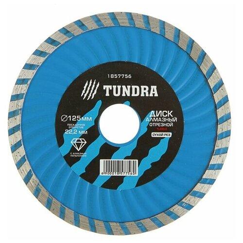 Фото - Диск алмазный отрезной TUNDRA 1857756, 125 мм 1 шт. диск алмазный отрезной tundra 1857756 125 мм 1 шт