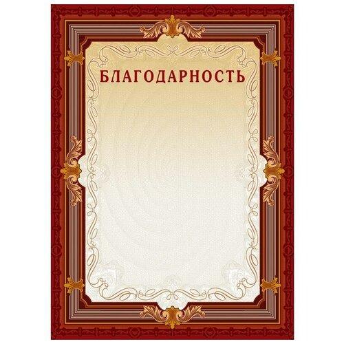 Благодарность Комус А4, коричневая рамка, без герба