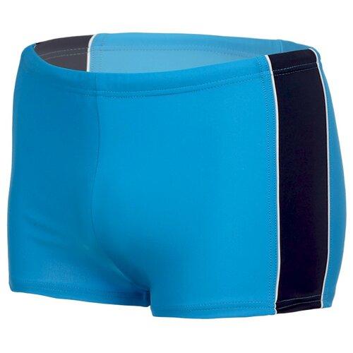 Купить Плавки для мальчиков, ALIERA, П 22.5.4а, размер 146-152, Белье и пляжная мода