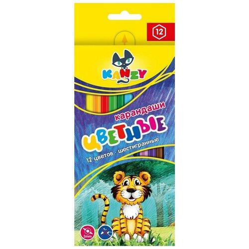 Купить Карандаши цветные 12 цветов 6-гран, ВКФ Мой друг тигрёнок, CP- 2012 2 штуки, Воскресенская карандашная фабрика, Цветные карандаши