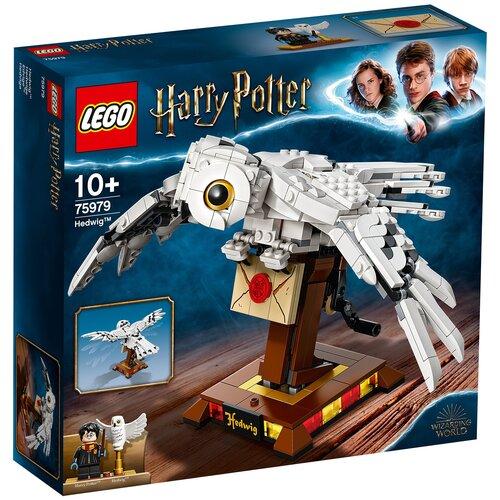 Конструктор LEGO Harry Potter 75979 Букля lego harry potter волшебные секреты