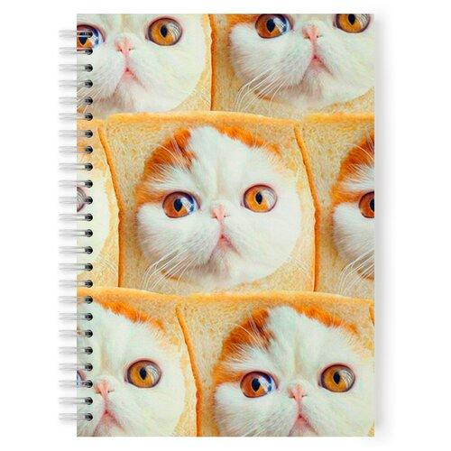Купить Тетрадь 48 листов в клетку с рисунком Котенок Снупи, Drabs, Тетради