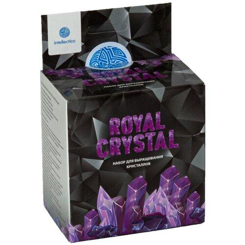 Купить Набор для исследований Intellectico Royal Crystal фиолетовый, Наборы для исследований