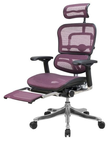 Comfort Seating Ergohuman Plus Legrest