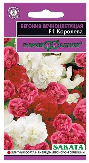 Семена Гавриш Эксклюзив Бегония вечноцветущая Королева F1, гранулы, пробирка, смесь 4 шт.