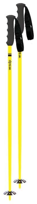 Палки для горных лыж DPS Santi Pole
