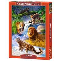 Пазл Castorland Big Cats (C-103553) , элементов: 1000 шт.