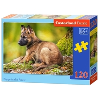 Пазл Castorland Puppy in the Forest (B-13258) , элементов: 120 шт.
