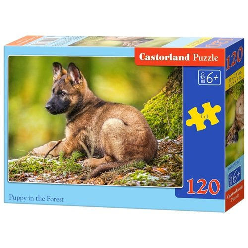 Купить Пазл Castorland Puppy in the Forest (B-13258), элементов: 120 шт., Пазлы