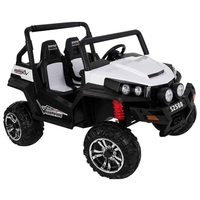 RiverToys Багги Buggy T009TT 4WD