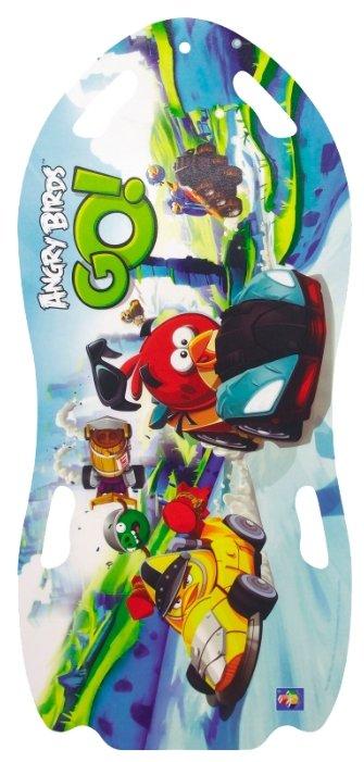 Ледянка 1 TOY Angry Birds (Т57214)