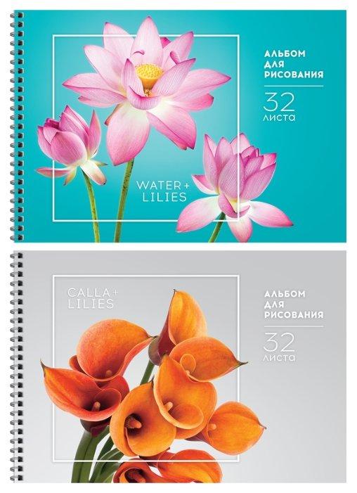 Альбом для рисования ArtSpace Цветы Стильные букеты 29.7 х 21 см (A4), 100 г/м2, 32 л.