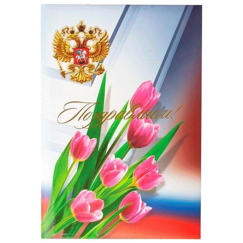 Ульяновский ДОМ ПЕЧАТИ Папка адресная Поздравляем! С гербом России A4 голубой/красный