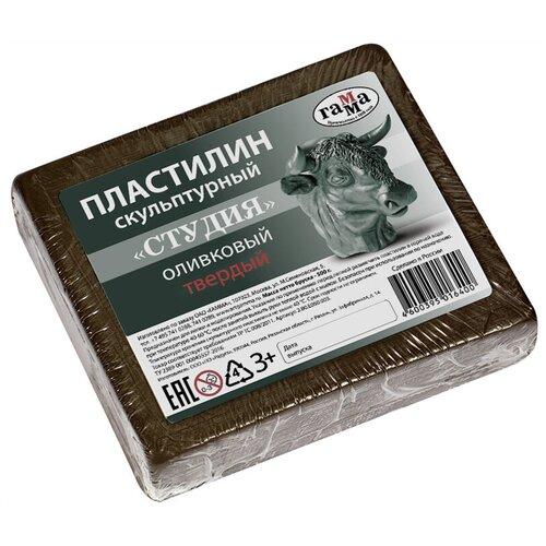 Купить Пластилин ГАММА Студия твердый оливковый 500 г (2.80.Е050.003), Пластилин и масса для лепки
