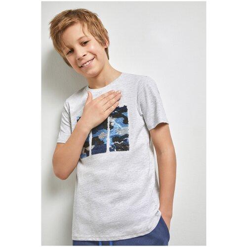 Фото - Футболка для мальчиков размер 158, серый, ТМ Acoola, арт. 20110110289 футболка acoola размер 158 белый