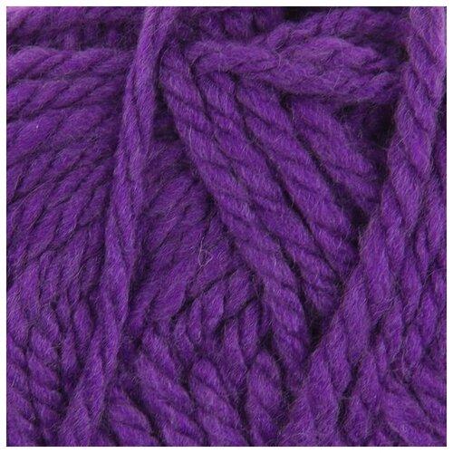 Купить Пряжа Пехорка Осенняя , 150 метров, 5 мотков по 200 грамм, цвет: 78 фиолетовый