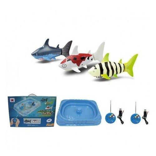 Радиоуправляемые Рыбки Create Toys (С Бассейном)