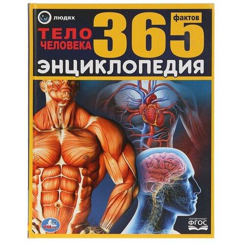 Павлинов И. Тело человека. 365 фактов павлинов