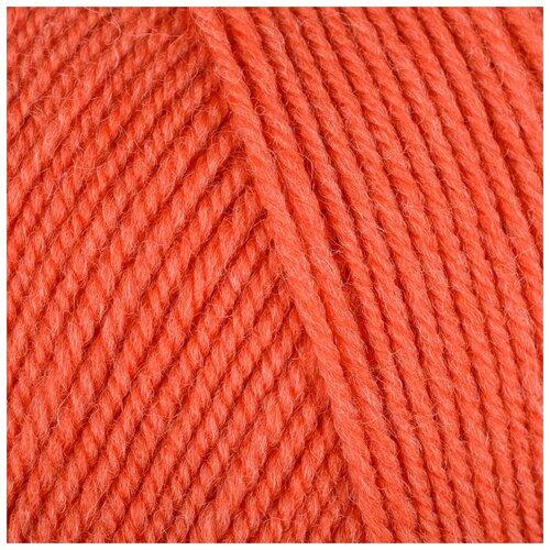 Купить Пряжа Пехорка Австралийский меринос , 400 метров, 5 мотков по 100 грамм, цвет: 396 настурция