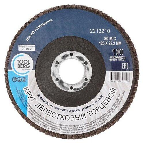 2213210 Круг лепестковый торцевой 125х22, Р100 (алюминий), T4P