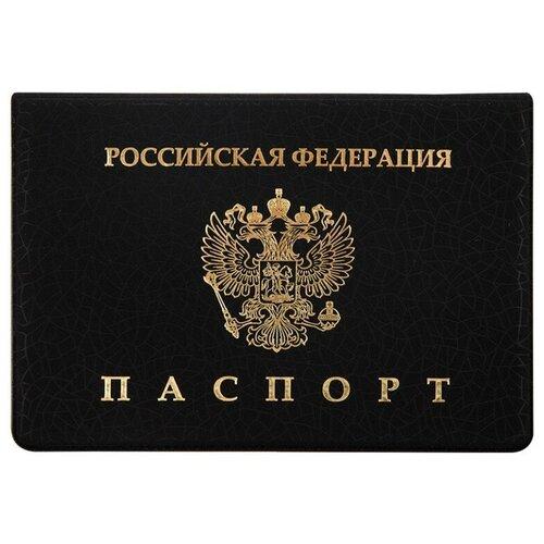 Обложка для паспорта OfficeSpace Герб Графит, черный