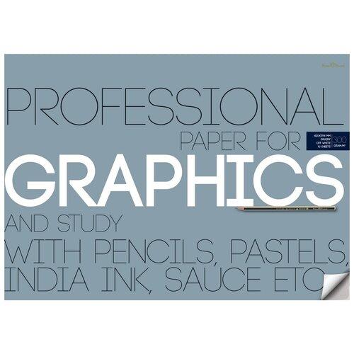 Бумага для графики Bruno Visconti А2, 10 листов, блок 300 гр, в папке