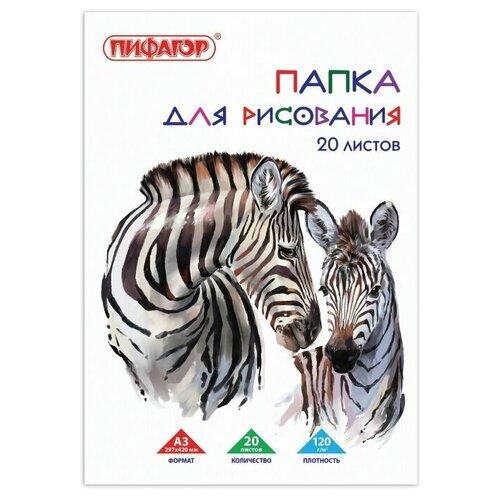 Фото - Папка для рисования Пифагор Зебры 42 х 29.7 см (A3), 120 г/м², 20 л. папка для рисования bruno visconti 42 х 29 7 см a3 160 г м² 20 л