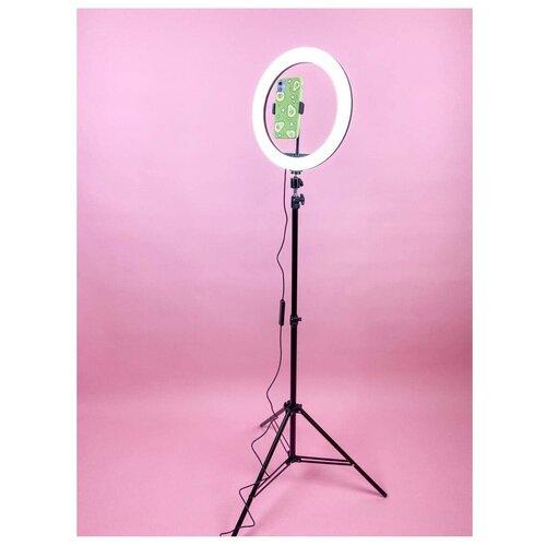 Стедодиодная кольцевая лампа 33 см + В ПОДАРОК Bluetooth пульт / Лампа с раздвижным металлическим штативом 210 см и с гибким держателем телефона / Цветная мультколор лампа для фото видео съемки для селфи для визажиста для блогера (Черный)