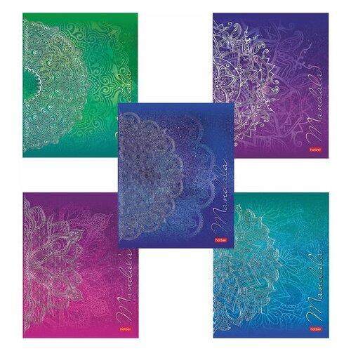 Фото - Тетрадь, А5, 48 л., HATBER, скоба, клетка, 3D фольга, Mandala (5 видов в спайке), 48Т5лофВ1 тетрадь а5 48 л пзбм скоба клетка матовая ламинация фольга блестки юникорнизация 5 видов 027934
